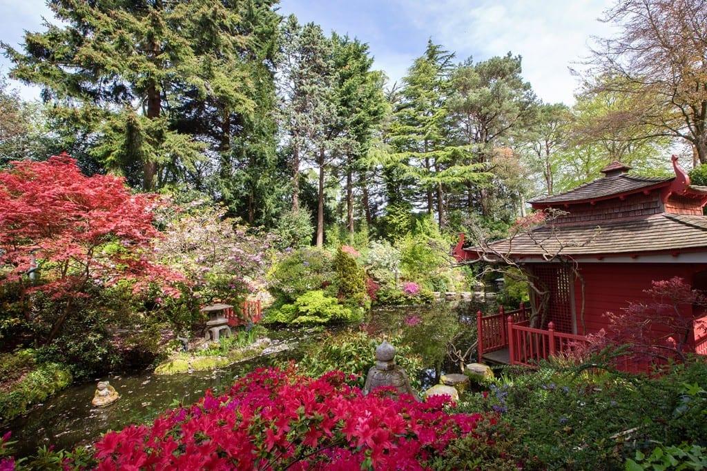 The Japanese Gardens