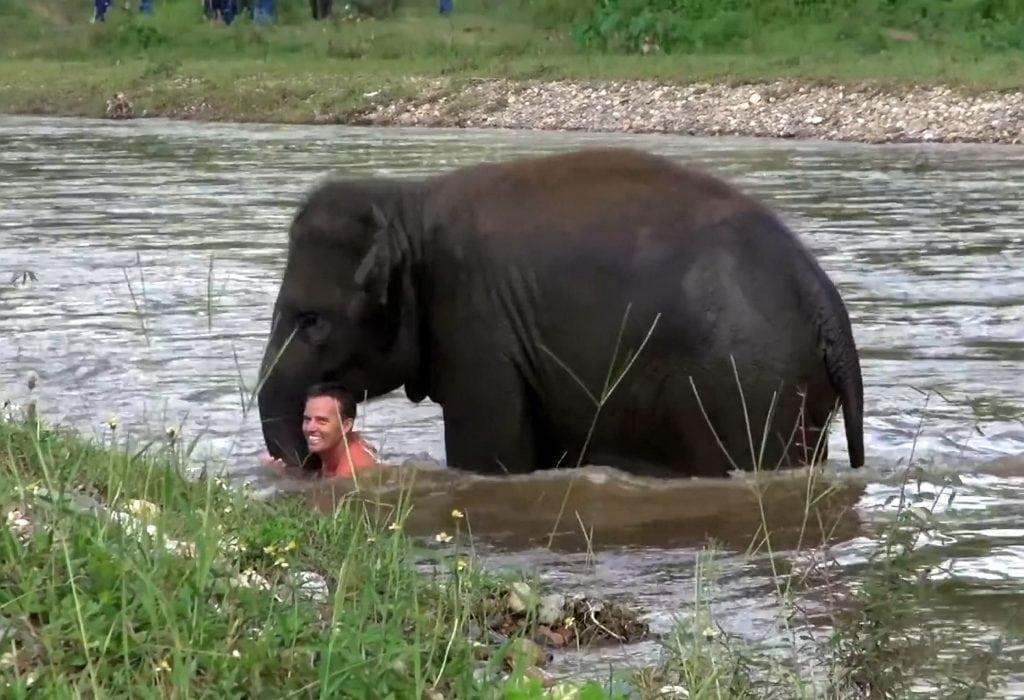 swns_elephant_rescue_14-1024x700