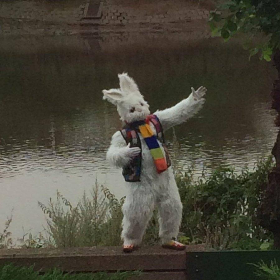 swns_bunny_bridge_04
