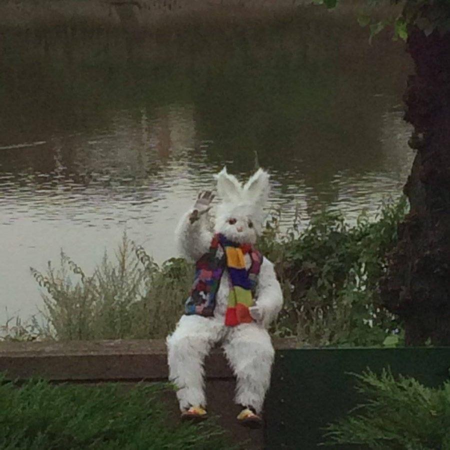 swns_bunny_bridge_06