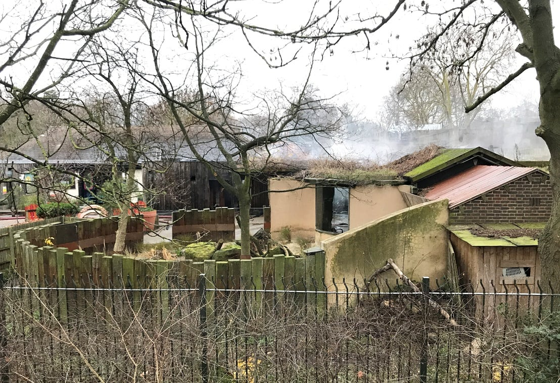 London Zoo fire: 70 firefighters tackle huge blaze at Adventure Cafe