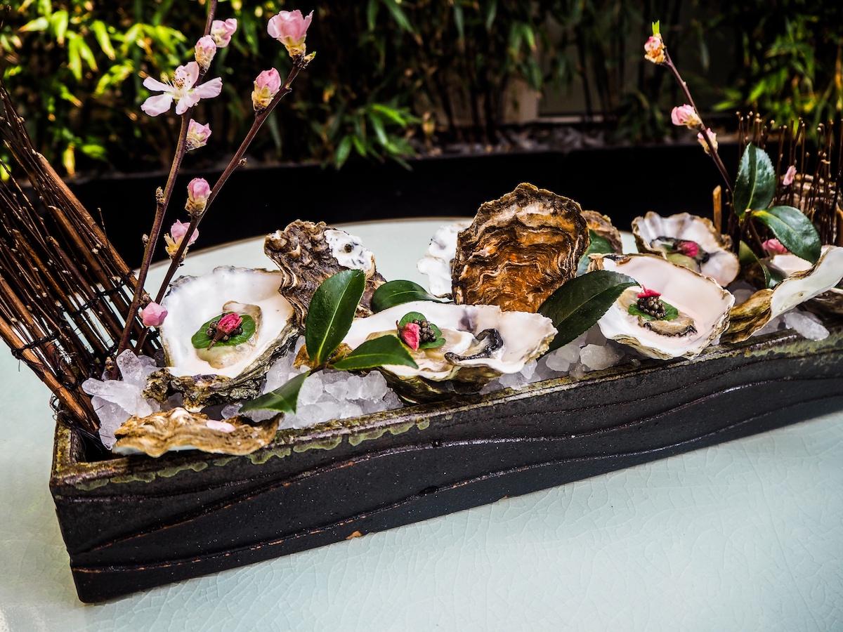 Dinings SW3 Sakura Oysters
