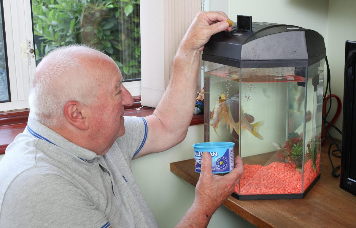 Keith with George - UK's oldest goldfish (c) SWNS
